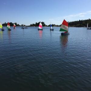 Søaktivitet (2)