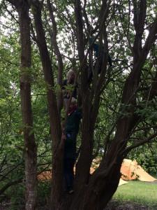 Vi boede heldigvis lige ved siden af et stort klatretræ