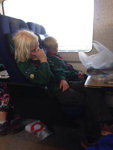 Trætheden meldte sig i toget.....
